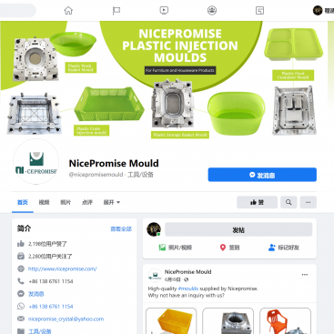 nice promise mould